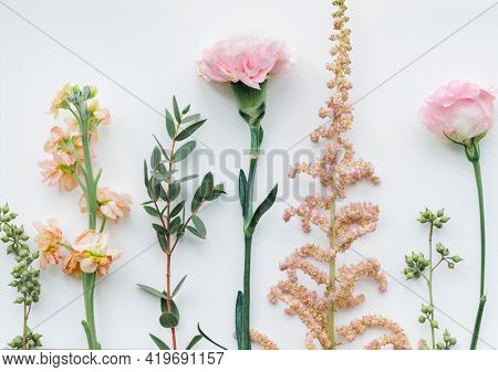 Various flowers on white background