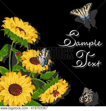 Sunflowers And Butterflies In The Illustration.yellow Sunflowers And Butterflies On A Black Backgrou
