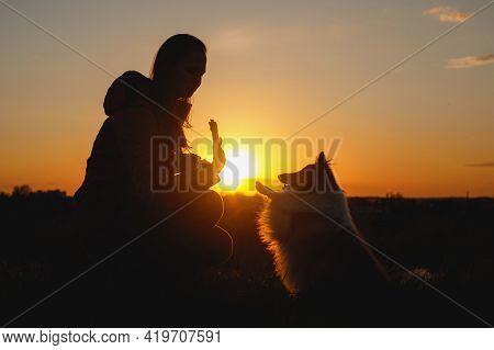 The Pet And Owner Friendship. Girl And Dog During Sunset.