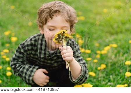 Curly Boy Collects And Sniffs Dandelion Flowers. Time Of Spring