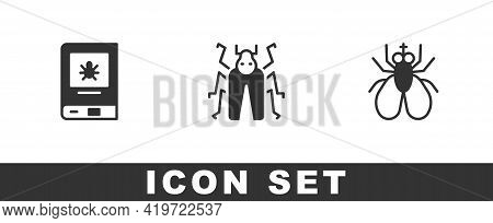 Set Book About Insect, Beetle Bug And Insect Fly Icon. Vector