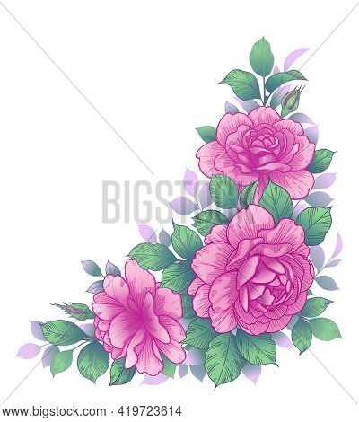 Hand Drawn Pink Rose Flowers And Green Leaves Isolated On White. Elegant Floral Arrangement. Vector