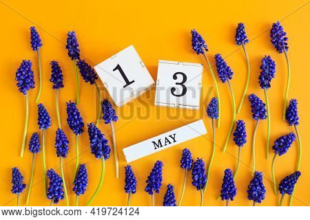 Calendar For May 13: Cubes With The Number 13, The Name Of The Month Of May In English, Scattered Fl
