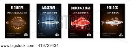 Sea Fish Realistic Poster Set With Different Species Symbols Isolated Vector Illustration