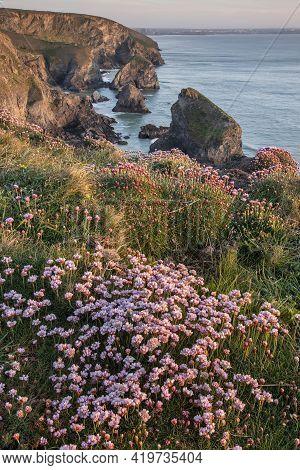 Beautiful Landscape Image During Spring Golden Hour On Cornwall Coastline At Bedruthan Steps