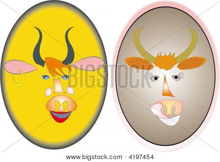 Bull And Cow.