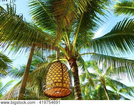 Outdoor Hanging Lamps On Poles. Evening Lighting. Lantern On A Tree Background. Lantern In The Form