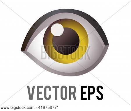 Vector Single Human Eye, Looking Forward Icon