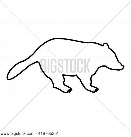 Badger Animal Wild Meles Taxus Predatory Mammal Family Kunihih Carnivore Contour Outline Black Color