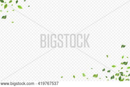 Green Foliage Motion Vector Transparent