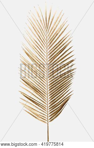 Areca palm leaf painted in gold on an off white background