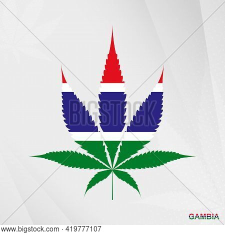 Flag Of Gambia In Marijuana Leaf Shape. The Concept Of Legalization Cannabis In Gambia. Medical Cann