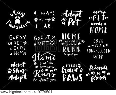 Pet Adoption Phrase Black And White Poster. Inspirational Quotes About Domestical Pets Adoption. Han