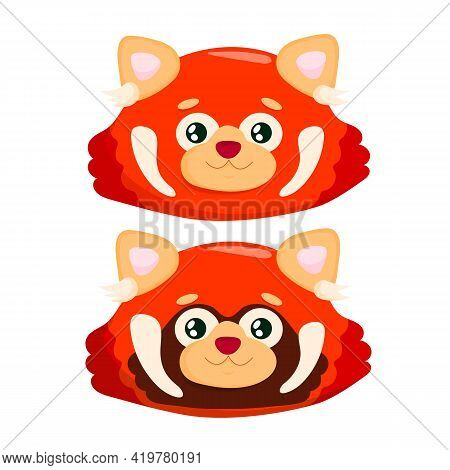Head Of Cute Red Panda. Little Panda. Ailurus Fulgens In Front Of A White Background.