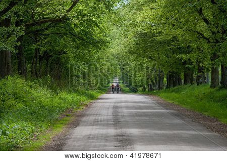 Country road with cyclists