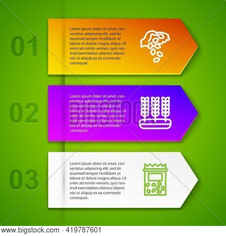 Set Line Seed, Wheat And Pack Full Of Seeds Of Plant. Business Infographic Template. Vector