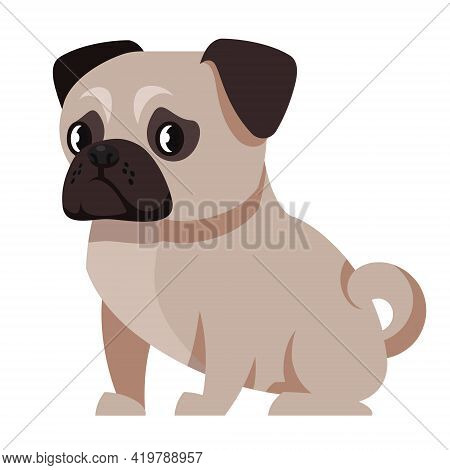 Sitting Pug Side View. Cute Pet In Cartoon Style.