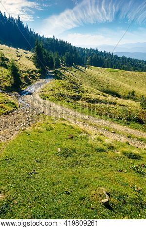 Countryside Road Through Forested Hills And Meadows. Summer Mountain Landscape On A Bright Sunny Mor