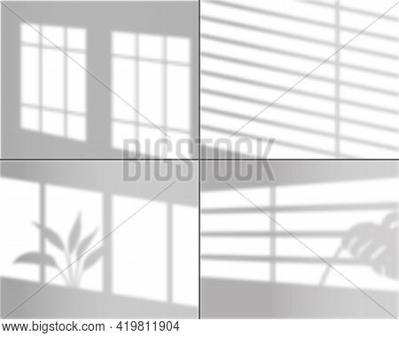 Window Shadows. Realistic Light Overlay Wall Shade With Tropical Monstera Plants Grey Shows Effect I