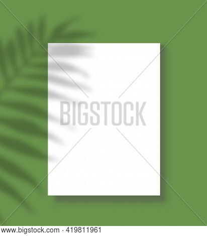 Poster With Shadow. Blank Paper Sheet Page With Palm Tree Shadow Overlay, White Vertical Canvas On W