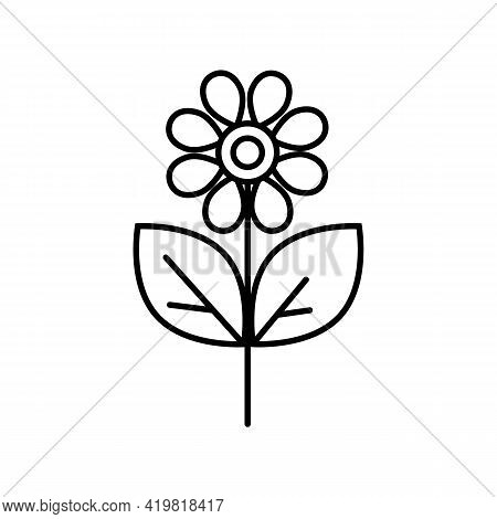 Black And White Simple Flower Icon With Petals, Stem And Leaves. Seedlings, Summer Flower, Chamomile