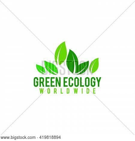Natural Green Leaf Ecology Nature Element Vector