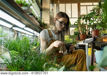 Love For Plants And Gardening Hobby Concept With Young Female Caring For Houseplants After Work, Rel