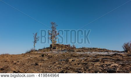 On A Rocky Hill, There Are Patches Of Snow, Sparse Vegetation. Bare Trees Are Against The Blue Sky.