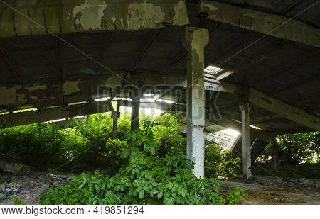 Idustrial Interior At The Old An Abandoned Hangar That Is Overgrown With Grass And Will Soon Fall, S