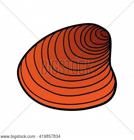Hand-drawn Clam Shell Of Engraved Line. Design Element For Invitations, Greeting Cards, Posters, Ban