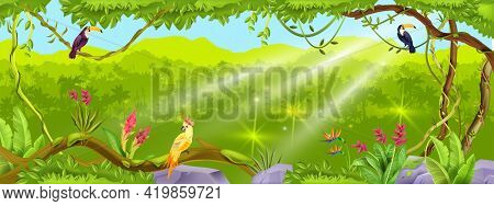 Jungle Forest Vector Background, Nature Tropical Wood Landscape, Liana, Paradise Trees, Exotic Birds