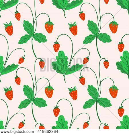 Strawberry Seamless Pattern. Hand Drawn Fresh Forest Or Garden Berry. Whole Juicy Berries, Bush With