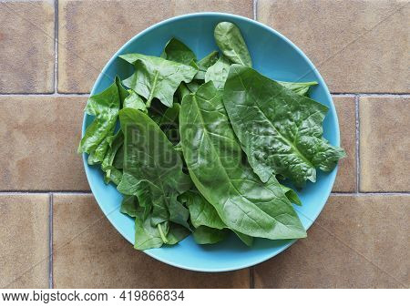 Green Spinach Leaves In A Dish