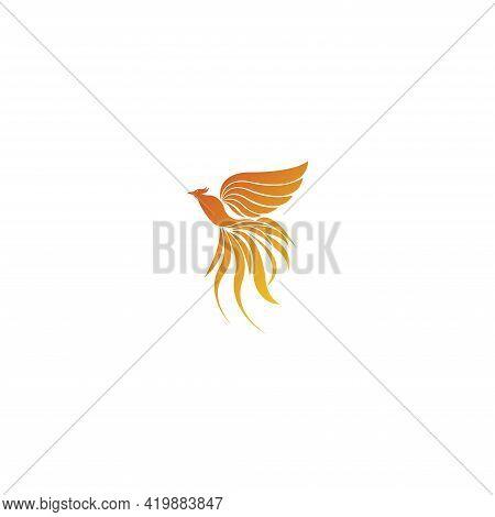 Luxury Phoenix Logo Vector. Creative Phoenix Bird Logo Vector Design Illustration
