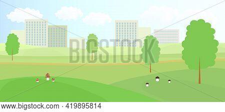 Park Near The City. Trees, Mushrooms, Footpath, Grass.