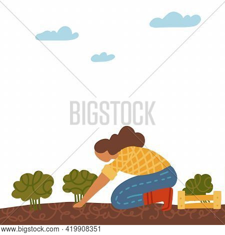 Organic Production Concept. Woman Grows Broccoli Cabbage Isolated On White Background. Process Of Lo