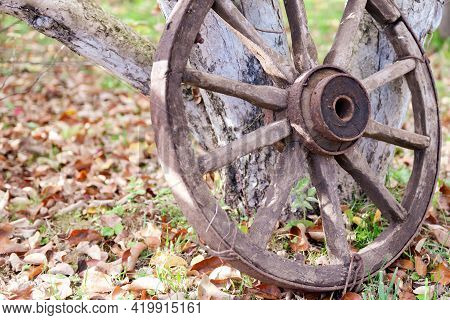 A Wheel From An Old Cart. A Wooden Wheel With An Iron Rim Is Leaning Against A Tree. Autumn Tire Ser