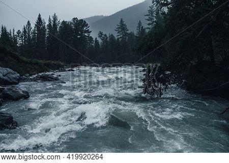 Gloomy Rainy Landscape With Powerful Mountain River In Heavy Rain. Dark Atmospheric View To Turbulen