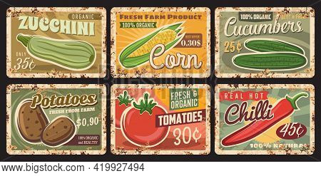 Farm Vegetables Harvest Rusty Metal Plate. Zucchini, Corn And Cucumbers, Potatoes, Tomatoes And Chil