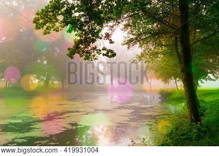 Abstract natural background, trees in the early morning with beautiful fantastic bokeh