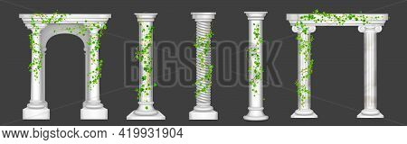 Ivy On Marble Columns And Arches, Vines With Green Leaves Climbing On Antique Stone Pillars, Creeper