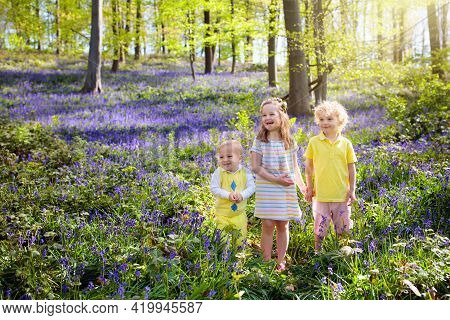 Kids Playing In Bluebell Woods. Children Watching Protected Plants In Bluebell Flower Woodland On Su