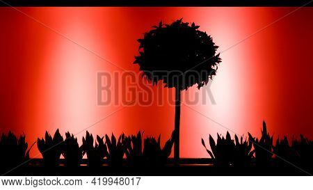 Still Life With Tree And Grass And With Abstract Red And Black Colors. Tree Silhouette With Contrast