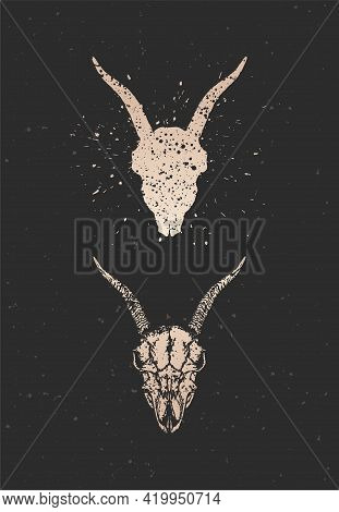 Vector Illustration With Two Variants Of Hand Drawn Goat Skull On Black Background. Gold Silhouettes