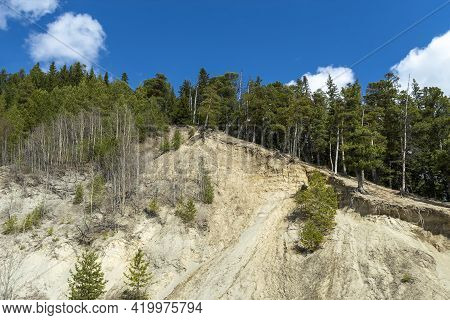 Sand Mountain And Siberian Pines Upstairs. Sunny Good Day. Front View