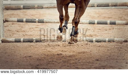The Horse Overcomes An Obstacle. Equestrian Sport, Jumping. Overcome Obstacles. Dressage Of Horses I