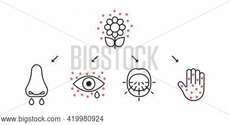 Allergy Symptoms Line Icons, Seasonal Allergic. Inflammation Of Eyes, Lacrimation, Sneeze, Blisters
