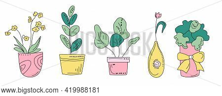 Different Domestic Plants In Doodle Style. Hand Drawn Set For Seedling.eco Hobby.illustration With G