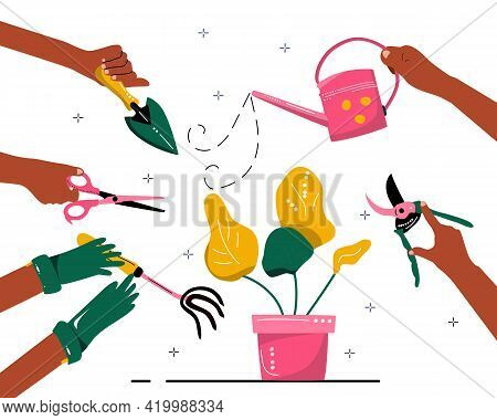 Hands Hold Gardening Tools And Take Care Of Plant In A Pot. Growing And Seedling Process. Eco Hobby
