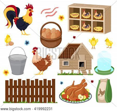 Poultry Farm Elements Set With Owner Birds Barn Coop Roost Chicken Meat And Eggs. Chicken Coop With
